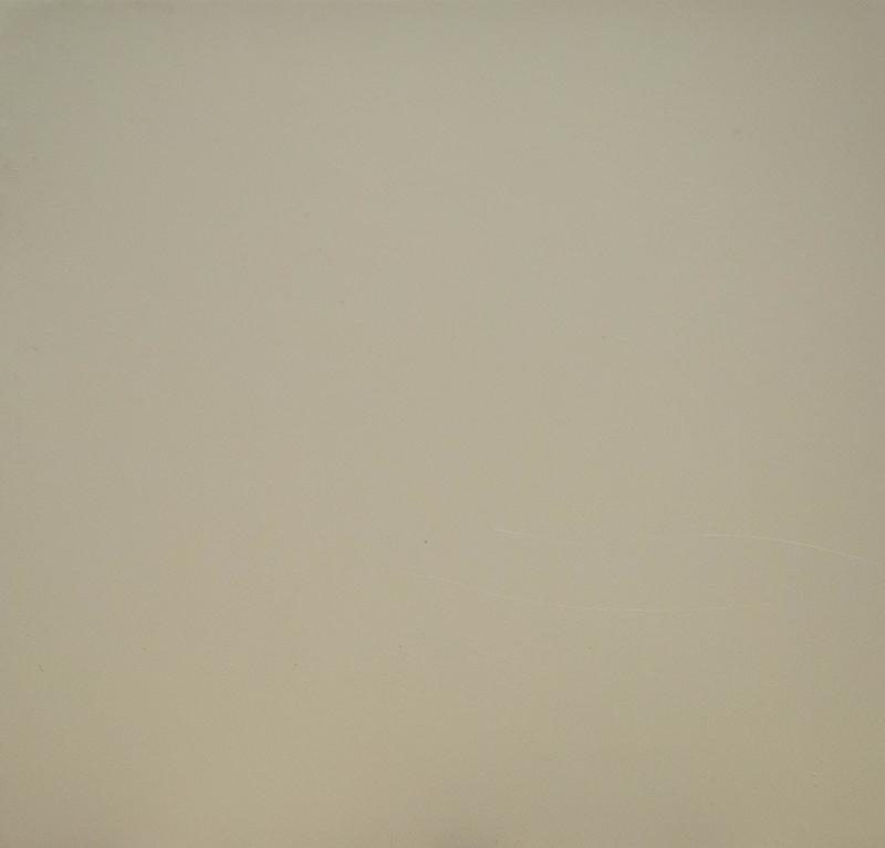color palette for kitchen cashmere grey